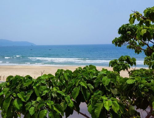 Jazz Hotel, Dog Friendly Beach Hotel in Da Nang, Vietnam