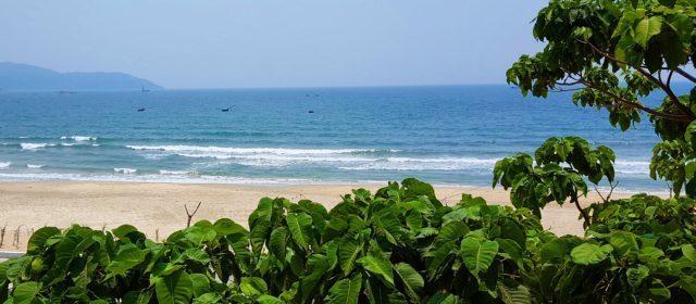 Jazz Hotel, Dog Friendly Beach Hotel in Da Nang, Vietnam